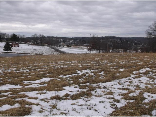 1488 Greenhouse Rd, Zanesville, OH 43701 (MLS #3965025) :: Keller Williams Chervenic Realty