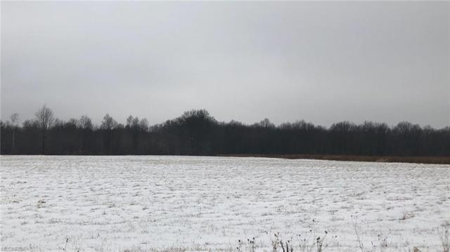 Duck Creek Rd, North Jackson, OH 44451 (MLS #3965089) :: RE/MAX Trends Realty