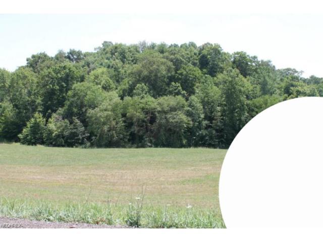 Lot 14 Dietz, Zanesville, OH 43701 (MLS #3965098) :: The Crockett Team, Howard Hanna