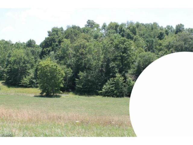 Lot 15 Dietz, Zanesville, OH 43701 (MLS #3965165) :: RE/MAX Edge Realty