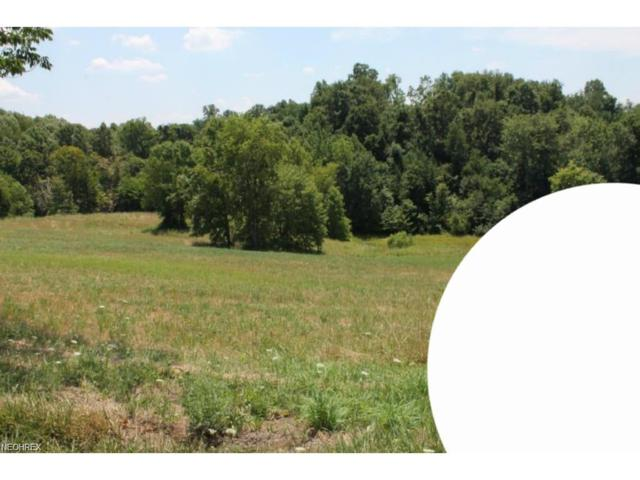 Lot 17 Dietz, Zanesville, OH 43701 (MLS #3965188) :: RE/MAX Edge Realty