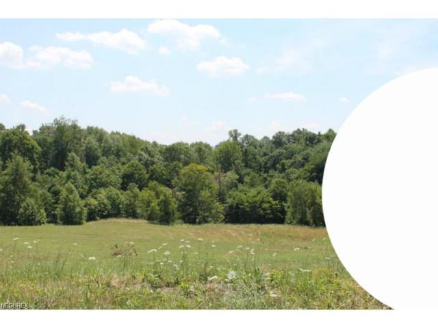 Lot 18 Dietz, Zanesville, OH 43701 (MLS #3965195) :: Tammy Grogan and Associates at Cutler Real Estate