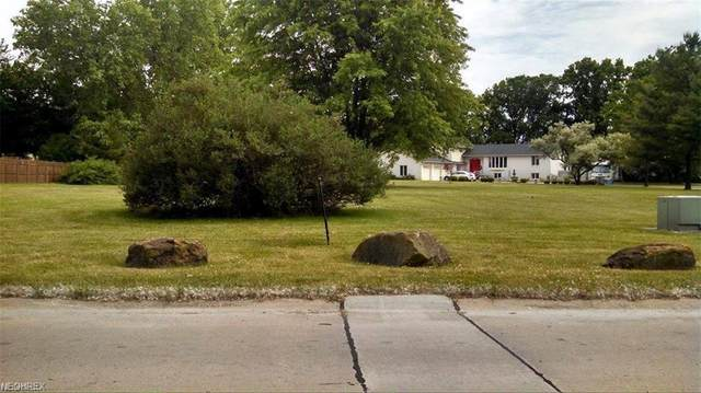 401 Oaknoll Drive, Amherst, OH 44001 (MLS #3967976) :: The Holden Agency