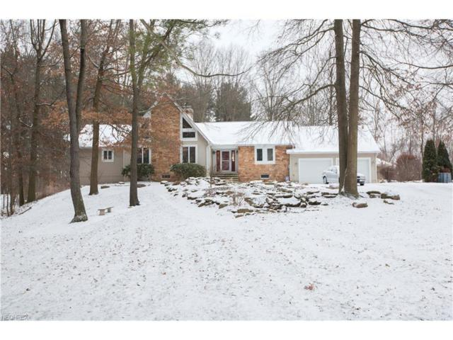 2994 Lovers Ln, Ravenna, OH 44266 (MLS #3968838) :: Tammy Grogan and Associates at Cutler Real Estate