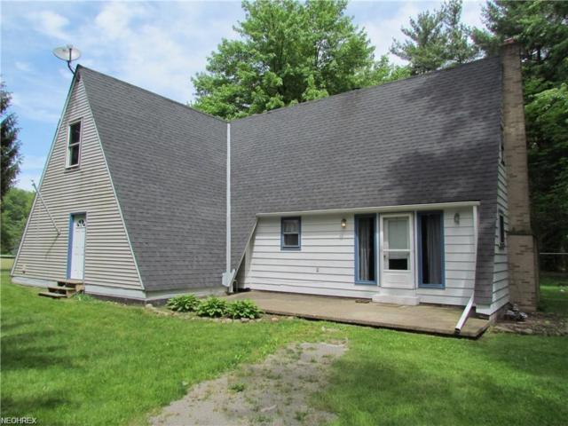 11770 Spencer Park Dr, Hiram, OH 44234 (MLS #3968925) :: Tammy Grogan and Associates at Cutler Real Estate