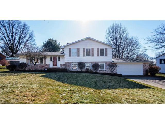 357 Morgan Ct, Salem, OH 44460 (MLS #3970033) :: Tammy Grogan and Associates at Cutler Real Estate