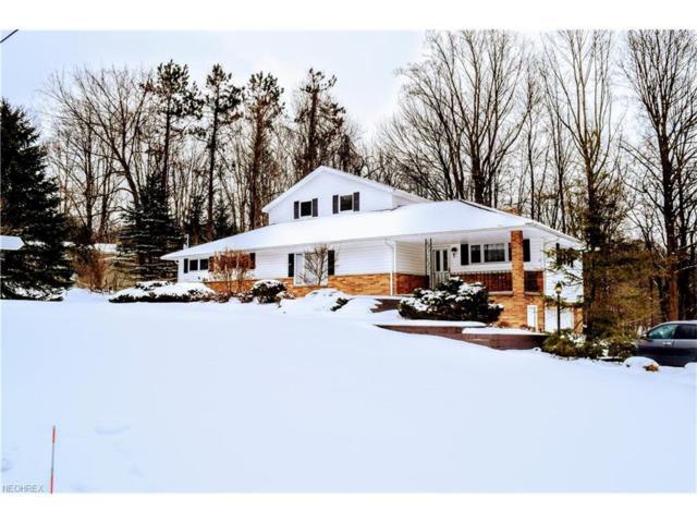 9965 Wilson Mills Rd, Chardon, OH 44024 (MLS #3970425) :: Tammy Grogan and Associates at Cutler Real Estate