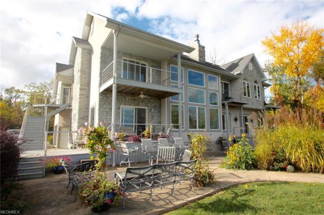204 Mcgettigan, Kelleys Island, OH 43438 (MLS #3970685) :: Keller Williams Chervenic Realty