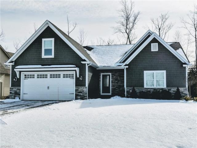 S/L 296 A Hunting Lake Dr, Concord, OH 44077 (MLS #3972188) :: Tammy Grogan and Associates at Cutler Real Estate