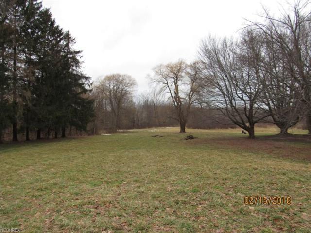 VL N Ridge-Rt 20 Rd, Ashtabula, OH 44004 (MLS #3972196) :: Tammy Grogan and Associates at Cutler Real Estate