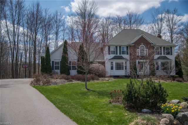 18370 Bayberry Dr, Chagrin Falls, OH 44023 (MLS #3972671) :: The Crockett Team, Howard Hanna