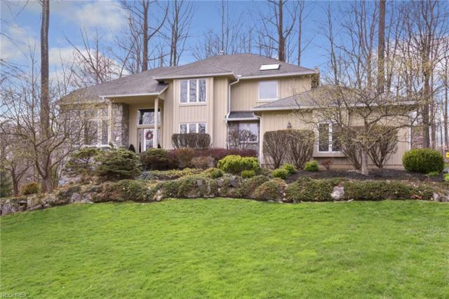 17410 Hawksview Ln, Chagrin Falls, OH 44023 (MLS #3972994) :: RE/MAX Trends Realty