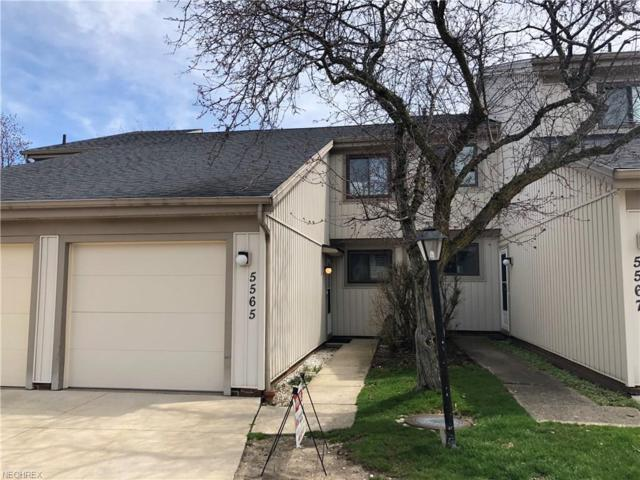 5565 Treetop Ct #132, Parma, OH 44134 (MLS #3973652) :: RE/MAX Trends Realty