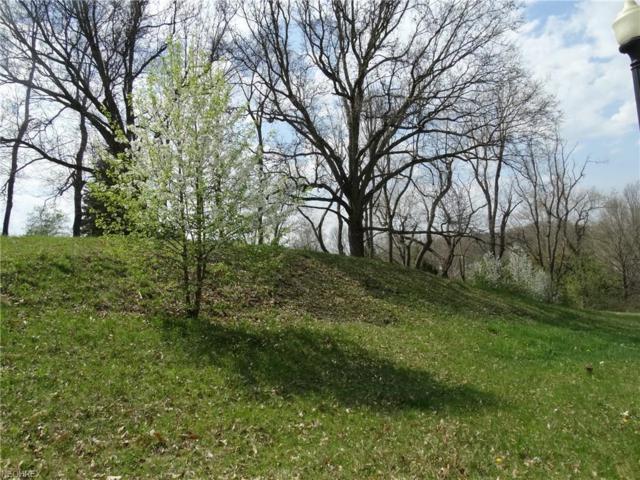 Lot 9 Orchard Hill Cir, Massillon, OH 44646 (MLS #3974440) :: The Crockett Team, Howard Hanna
