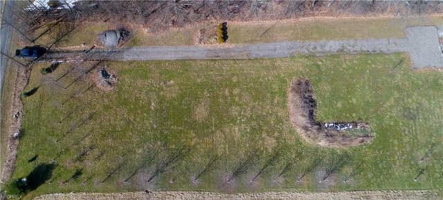 V/L New Milford, Atwater, OH 44201 (MLS #3977082) :: PERNUS & DRENIK Team