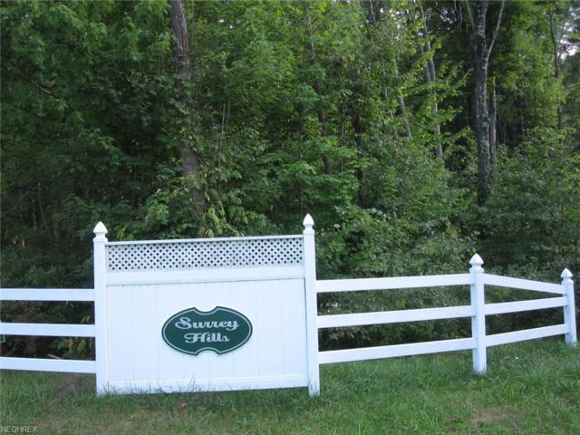 SL 31 Barnstable Rd, Middlefield, OH 44062 (MLS #3981069) :: The Crockett Team, Howard Hanna