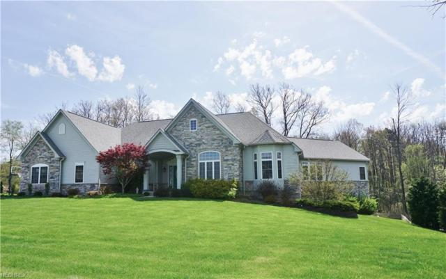 4165 Maggie Marie Blvd, Medina, OH 44256 (MLS #3981153) :: The Crockett Team, Howard Hanna