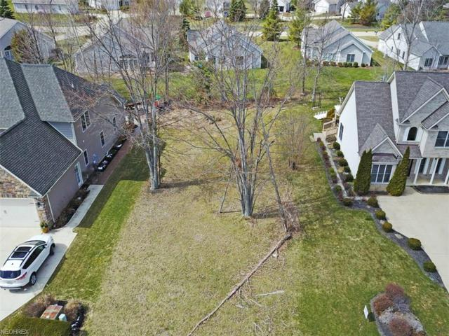 S/L 36 St. Francis Dr, Avon, OH 44011 (MLS #3981275) :: Keller Williams Chervenic Realty