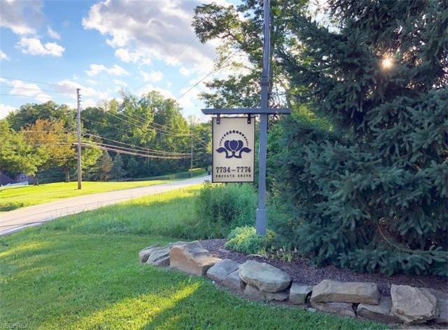 S/L Bainbridge Rd, Chagrin Falls, OH 44023 (MLS #3983058) :: The Crockett Team, Howard Hanna