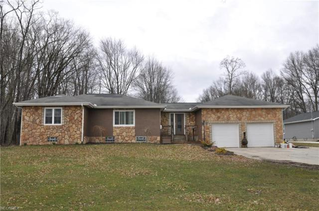 9485 Howland Springs, Warren, OH 44484 (MLS #3984716) :: Keller Williams Chervenic Realty