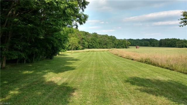 Lot 1 Rolling Meadows Dr, Garrettsville, OH 44231 (MLS #3985460) :: Keller Williams Chervenic Realty