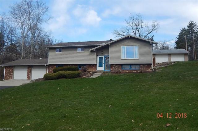 3825 Dillon Falls Rd, Zanesville, OH 43701 (MLS #3987799) :: Keller Williams Chervenic Realty