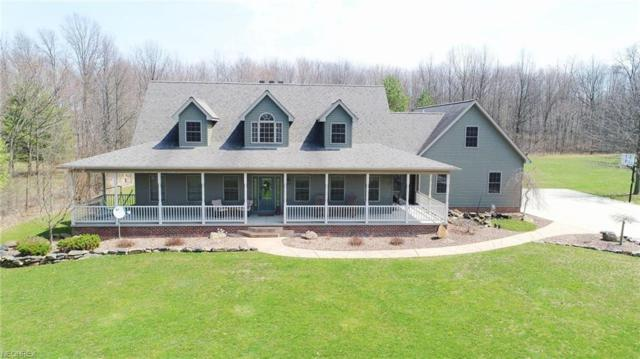 1187 S Turner Rd, Austintown, OH 44515 (MLS #3988486) :: RE/MAX Valley Real Estate