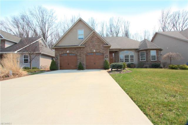 347 Copper Crk, Amherst, OH 44001 (MLS #3988534) :: The Crockett Team, Howard Hanna
