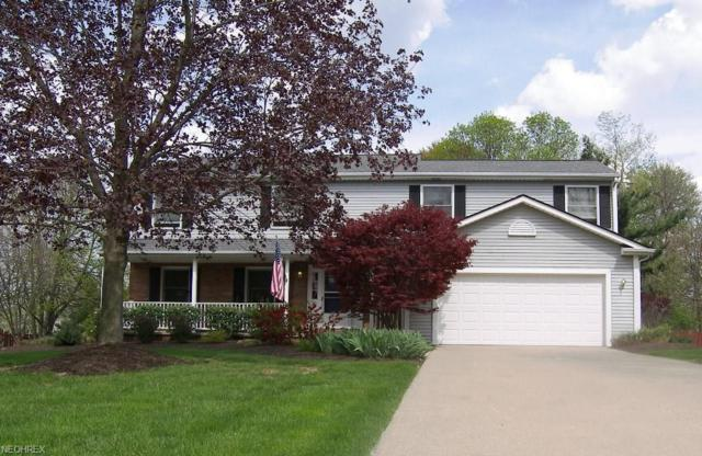 7651 White Oak Dr, Solon, OH 44139 (MLS #3988731) :: Tammy Grogan and Associates at Cutler Real Estate