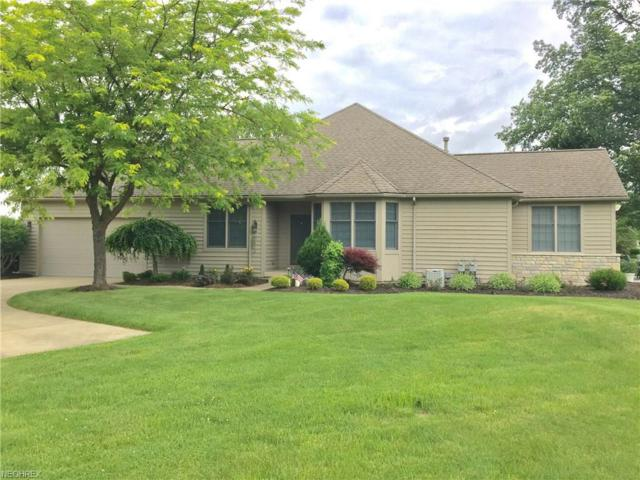 196 Briarcrest Vlg, Norwalk, OH 44857 (MLS #3990457) :: RE/MAX Trends Realty