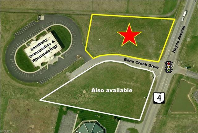 Bone Creek Dr, Sandusky, OH 44870 (MLS #3991605) :: PERNUS & DRENIK Team