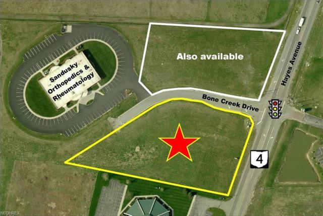 Bone Creek Dr, Sandusky, OH 44870 (MLS #3991606) :: PERNUS & DRENIK Team
