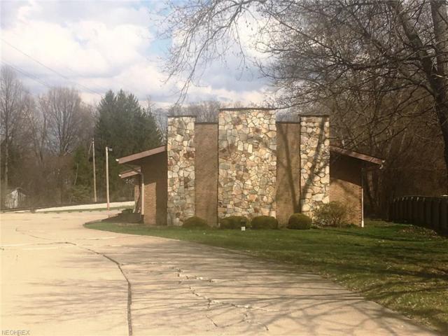 927 N Portage Path, Akron, OH 44303 (MLS #3991817) :: The Crockett Team, Howard Hanna