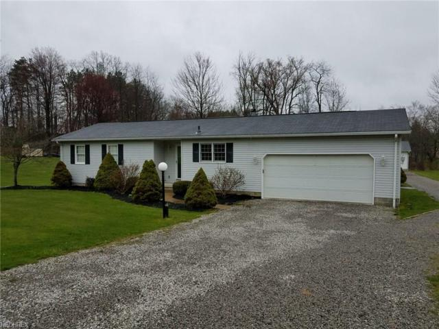 315 Mount Pleasant Rd, Clinton, OH 44216 (MLS #3992789) :: Tammy Grogan and Associates at Cutler Real Estate
