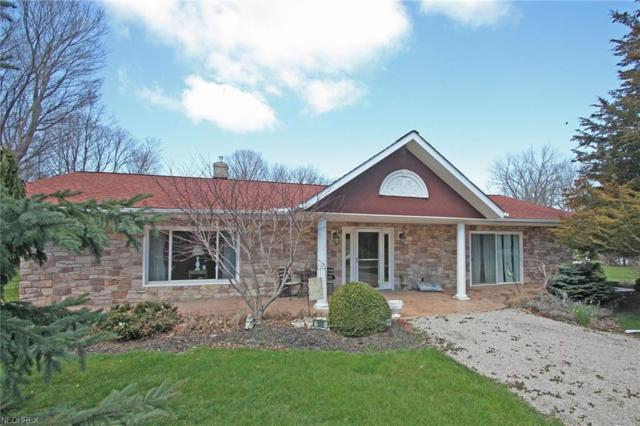 109 Johanna, Kelleys Island, OH 43438 (MLS #3993231) :: Tammy Grogan and Associates at Cutler Real Estate