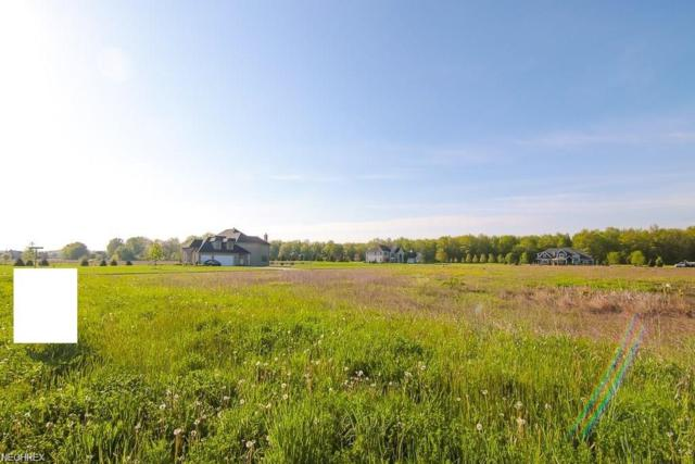 10284 Station Rd, Columbia Station, OH 44028 (MLS #3993956) :: RE/MAX Valley Real Estate