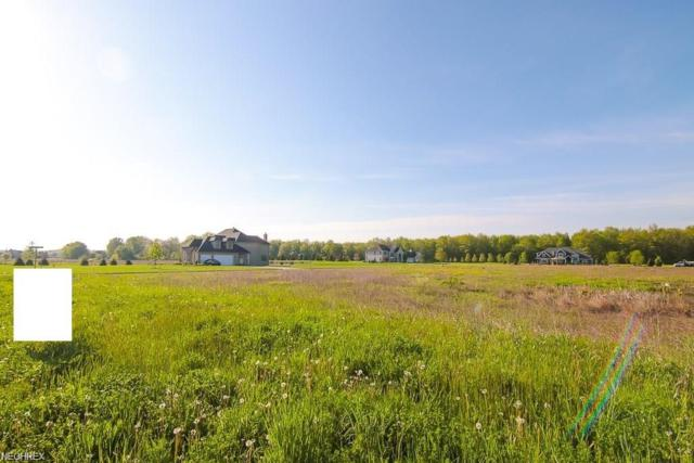 10550 Station Rd, Columbia Station, OH 44028 (MLS #3993985) :: RE/MAX Valley Real Estate