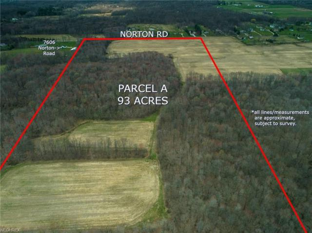 Parcel A Norton Rd, Hiram, OH 44231 (MLS #3995045) :: Tammy Grogan and Associates at Cutler Real Estate