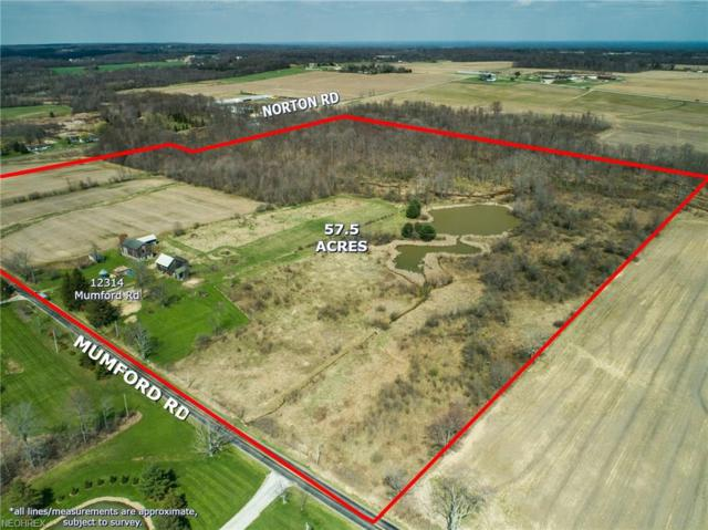 Parcel C 12314 Mumford Rd, Hiram, OH 44231 (MLS #3995057) :: Tammy Grogan and Associates at Cutler Real Estate