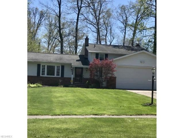 3892 Skyview Dr, Brunswick, OH 44212 (MLS #3996530) :: RE/MAX Trends Realty