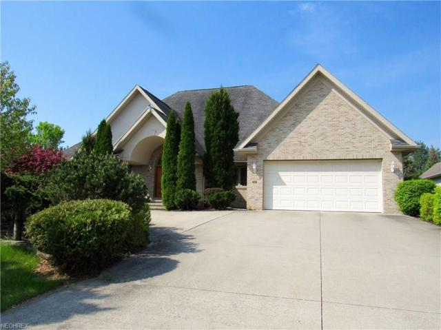 426 English Tern Dr, Fairlawn, OH 44333 (MLS #3997706) :: RE/MAX Trends Realty