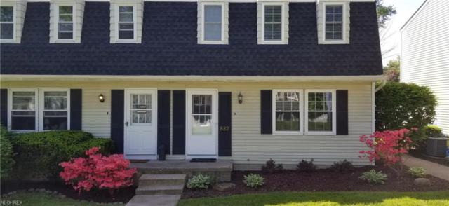 832 Wadsworth Rd A-2, Medina, OH 44256 (MLS #3998056) :: RE/MAX Trends Realty