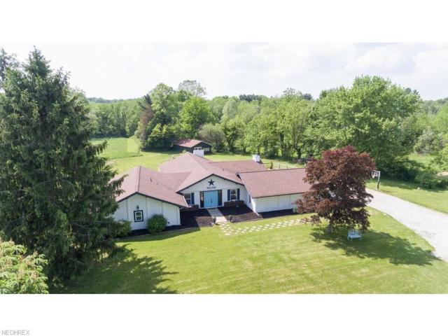 1090 River Rd, Hinckley, OH 44233 (MLS #4003306) :: Tammy Grogan and Associates at Cutler Real Estate