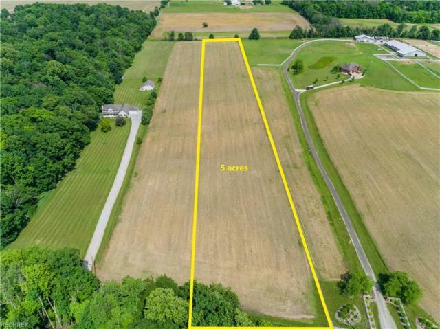 Immel St NE, Canton, OH 44721 (MLS #4005127) :: Tammy Grogan and Associates at Cutler Real Estate