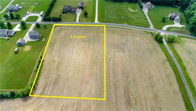 Immel St NE, Canton, OH 44721 (MLS #4005132) :: Tammy Grogan and Associates at Cutler Real Estate