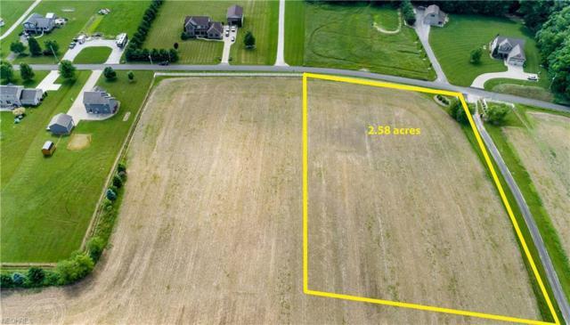 Immel St NE, Canton, OH 44721 (MLS #4005138) :: Tammy Grogan and Associates at Cutler Real Estate