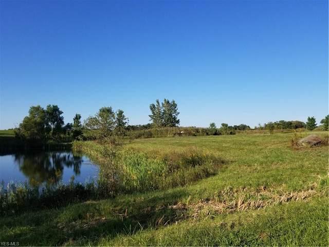 Ridge Top Drive, Medina, OH 44256 (MLS #4006951) :: The Crockett Team, Howard Hanna