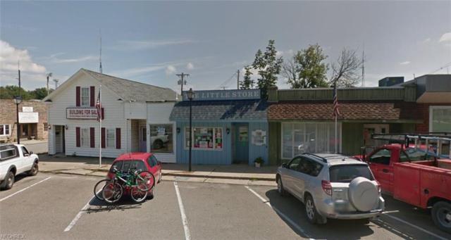 36 Public Sq, Andover, OH 44003 (MLS #4009182) :: PERNUS & DRENIK Team