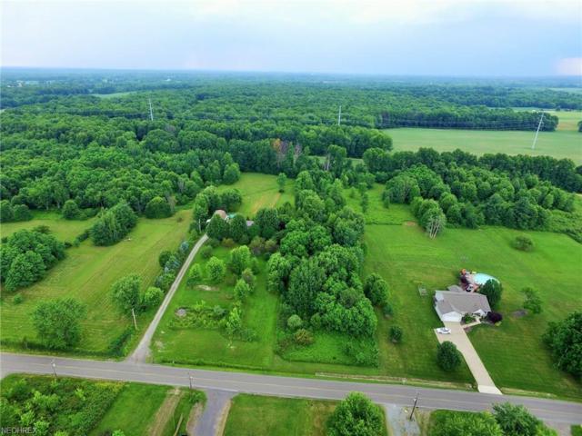 Pritchard Ohltown Rd, Newton Falls, OH 44444 (MLS #4010515) :: The Crockett Team, Howard Hanna