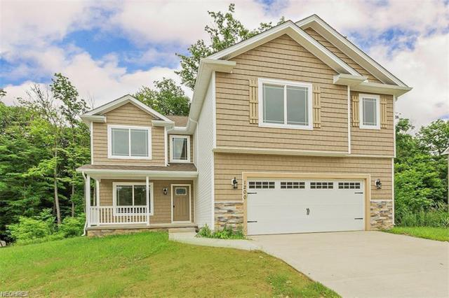 1200 Waterfront Pl, Painesville, OH 44077 (MLS #4011951) :: Keller Williams Chervenic Realty